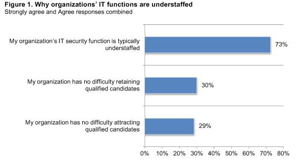 Figure 1 - Why IT functions understffed